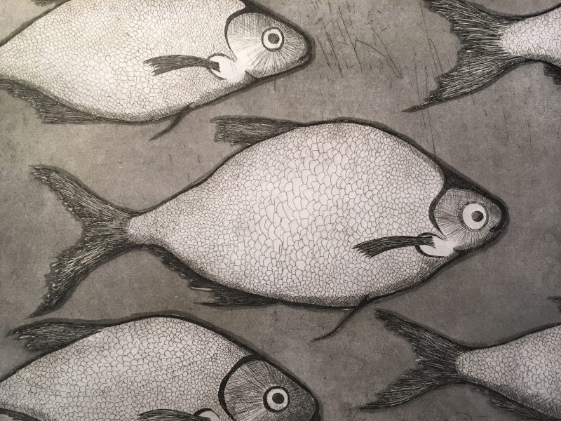 Etching & Aquatint – Sea Bass